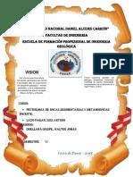 UNIVERSIDAD NACIONAL DANIEL ALCIDES CARRIÓN petro.docx