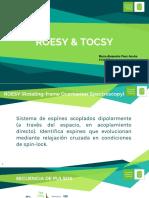 expo rmn tocsy y roesy.pptx