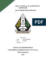 Laporan ECCE PMI.docx