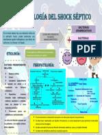 Infografia Fisiopatología Del Shock Séptico