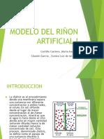 Modelo Del Riñon Artificial i Word