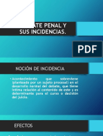 El Debate Penal y Sus Incidencias
