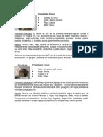 Fichas técnicas de materiales