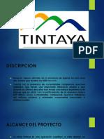Tin Taya