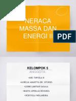 Neraca Massa 5.6