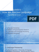 Psycholinguistics – Language processing.pptx