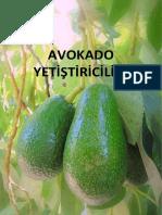 Avokado Yetistiriciligi.pdf