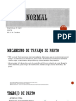 TDParto.ppt