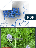 lucerneassignment-121215095634-phpapp02(1).docx