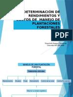 Clase 2 rendimientos  y costos de manejo de plantaciones forestal.pptx