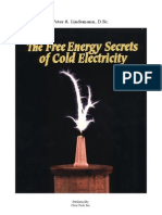 Lindemann - The Free Energy Secrets of Cold Electricity ITALIANO