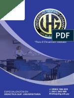 Diplomado en Didactica Superior Universitaria - Programa