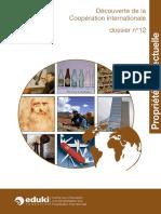 pro intelllectuelle résumé.pdf