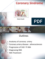 Acute Coronary Sindrome