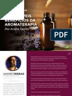 Ebook Aula 1 SDA Atualizado.pdf