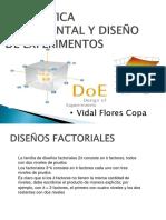 DOE1.pdf