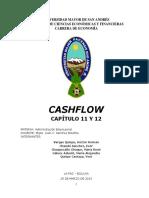 INFORME CAP 11 Y 12