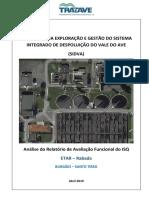 Rabada - Análise do Relatório de Avaliação Funcional_ versao 1.docx