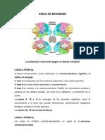 Neuropsicologia- Tiffanni Escribano
