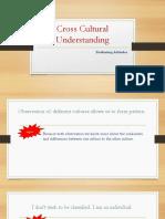 Cross Cultural Understanding Evaluating Attitudes