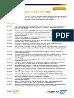 OpenSAP s4h11 Week 2 Transcript Es