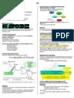 PMI (2) Resumen