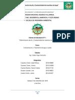 LABORATORIO-N01 (2).docx