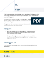 Cleaning-your-car.pdf