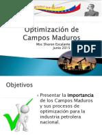 Optimización de Campos Maduros S. Escalante