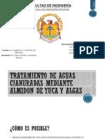 Tratamiento de Aguas Cianuradas Mediante Almidon de Yuca