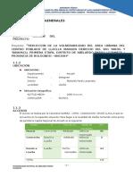 Estudio-de-Impacto-Ambiental-Defensa-Riberena.docx