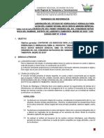 Tdr Estudio Hidrologico - Virg Del Sol