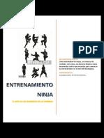 Shinobijutsu.pdf