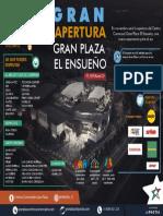 INFOGRAFÍA-ENSUEÑO.pdf