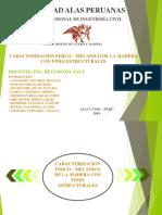 EXPOSICION DOMINGO_1.pptx