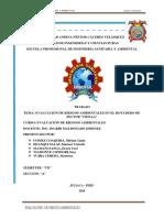 evaluacion de riesgos ambientales bot-chilla-convertido.docx