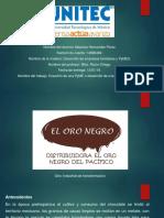 Proyecto Final Empesas Familiares y Pymes