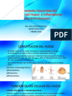 244027655 Transmision Neuromuscular Docx