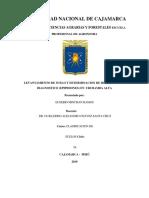 EPIPEDONES-MICNHAN111111.docx