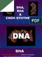 DNA-final