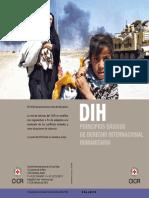 DIH.pdf
