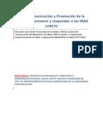 Loreto Plan de Comunicacion y Matriz de Actividades Proyecto OPSECHO