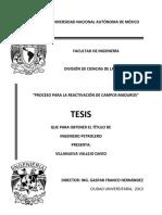 Proceso_para_la_reactivacion_de_Campos_M.pdf
