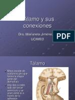 Talamo y Sus Conexiones1