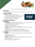nutricion.docx