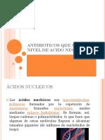 ANTB. ACIDOS NUCLEICOS.ppt