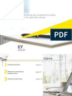 Rolul_Comitetului_de_Audit.pdf