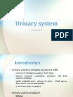 5. Urinary System