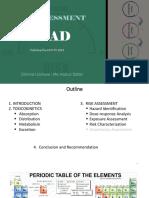 Lead Risk assessment presentation  d