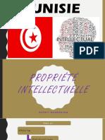 Propriété Intellectuelle